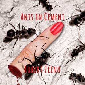 Ants in Cement Cover